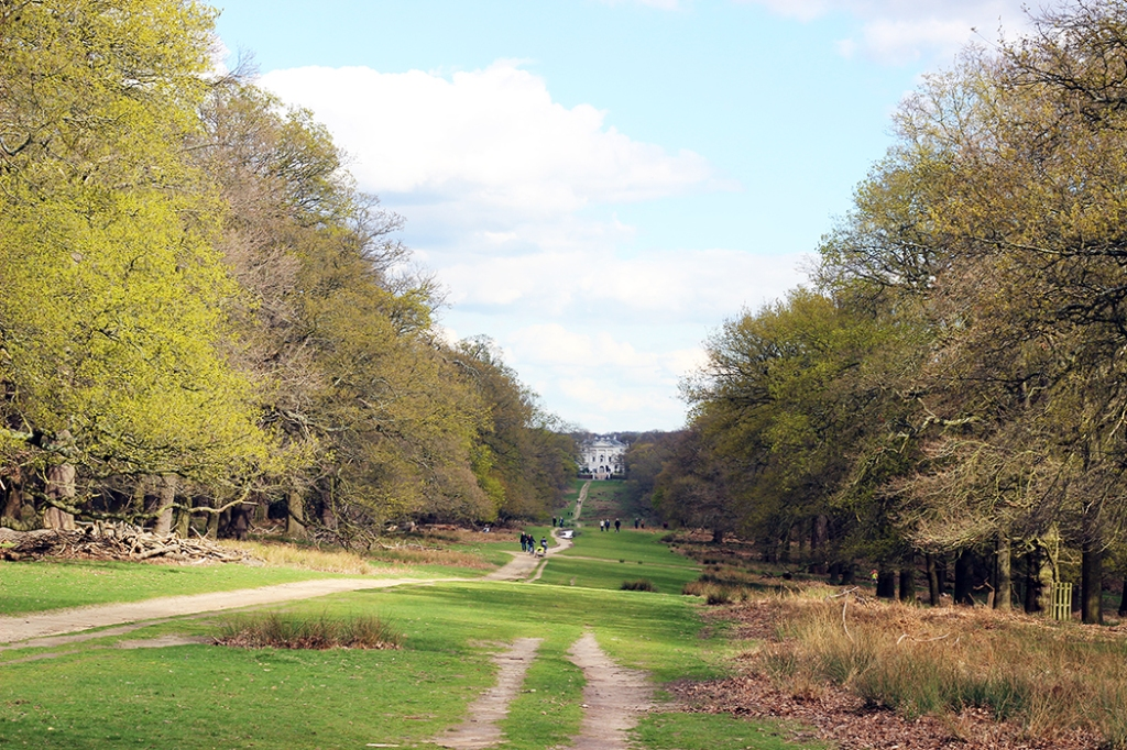 Richmond-Park-London-0587