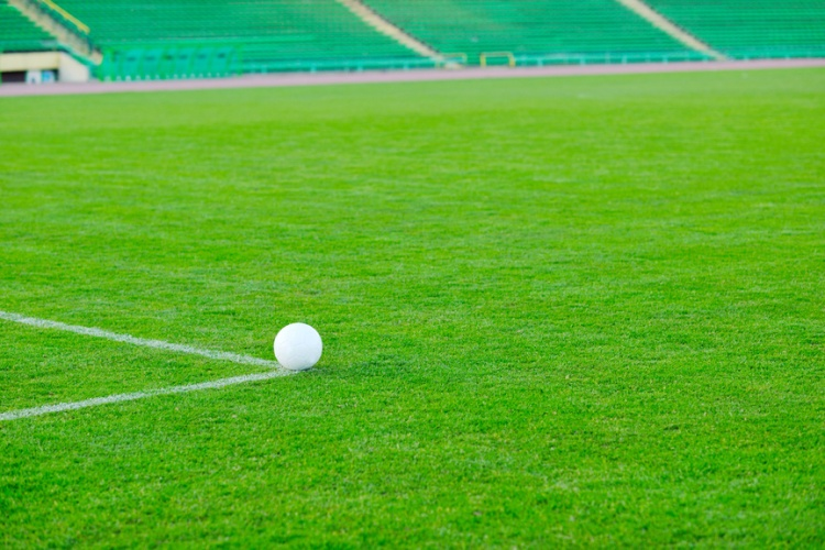white Soccer ball on grass at goal and stadium in background